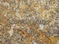 Carnival Granite