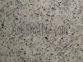 Luna Pearl Flower Granite