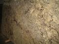 Granite slab Sage Brush